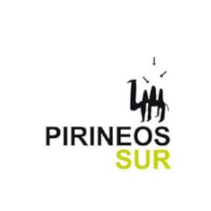 Logotipo Pirineos Sur